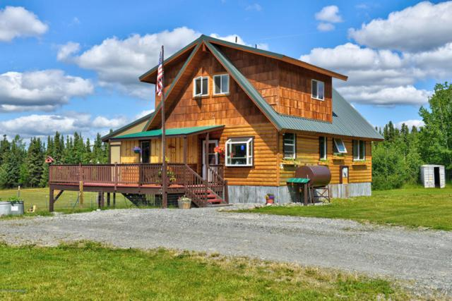35188 Alaskan View Lane, Soldotna, AK 99669 (MLS #18-12684) :: Channer Realty Group