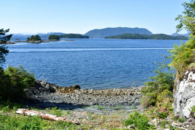 4313 Halibut Point Road, Sitka, AK 99835 (MLS #18-12813) :: Channer Realty Group