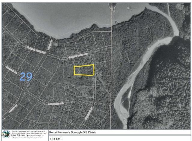 0000 Kachemak Bay State Park, Remote, AK 99603 (MLS #18-12859) :: Channer Realty Group