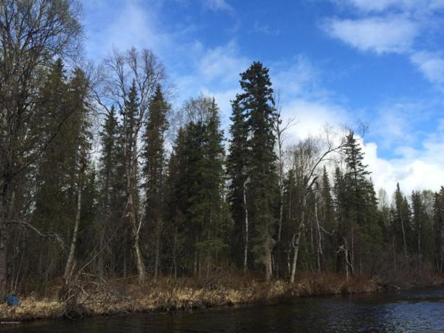 Tr N No Road Mama Bear Lake, Talkeetna, AK 99676 (MLS #18-13014) :: Synergy Home Team