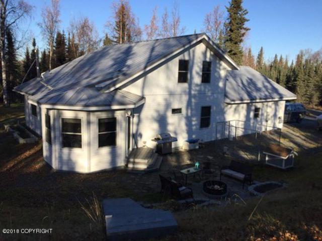 37300 Arctic Tern Road, Soldotna, AK 99669 (MLS #18-1330) :: Northern Edge Real Estate, LLC