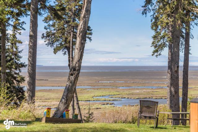 3861 Chiniak Bay Drive, Anchorage, AK 99515 (MLS #18-1332) :: RMG Real Estate Network   Keller Williams Realty Alaska Group