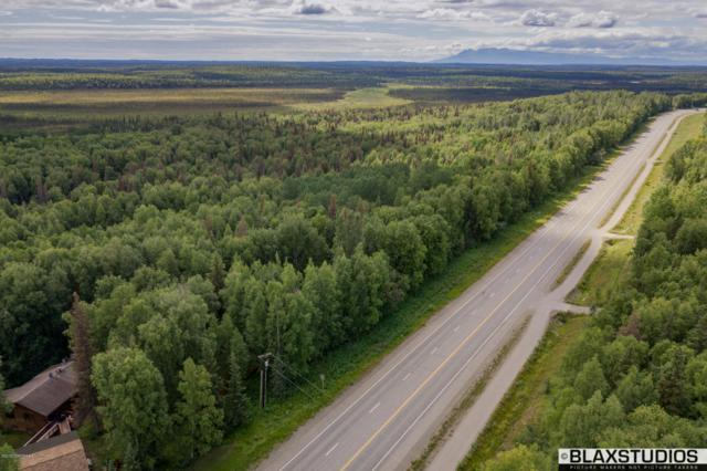 21594 W Parks Highway, Willow, AK 99694 (MLS #18-13391) :: Channer Realty Group