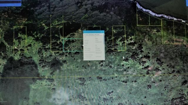 ASLS 90-17 Kupreanof, Remote, AK 99615 (MLS #18-13747) :: Synergy Home Team