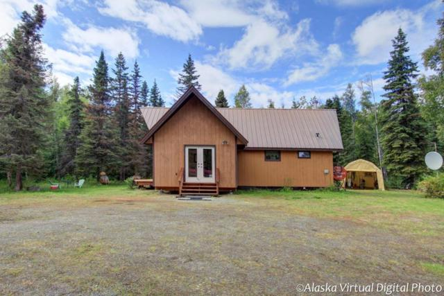 25751 W Long Lake Road, Willow, AK 99688 (MLS #18-13779) :: Synergy Home Team