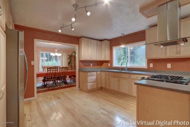 12131 W Wonderland Drive, Houston, AK 99623 (MLS #18-13856) :: Synergy Home Team