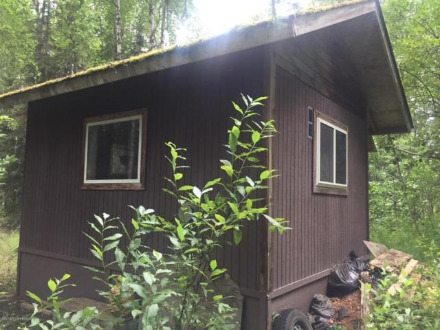 55377 Sroufe Boulevard, Willow, AK 99688 (MLS #18-13889) :: RMG Real Estate Network | Keller Williams Realty Alaska Group