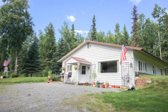 36225 Lou Morgan Drive, Soldotna, AK 99669 (MLS #18-13966) :: Synergy Home Team