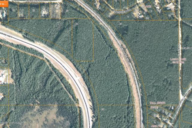 14207 W Parks Highway, Houston, AK 99694 (MLS #18-13999) :: Synergy Home Team