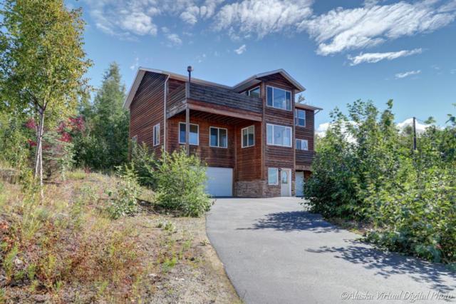 3475 S Peninsula Drive, Wasilla, AK 99654 (MLS #18-14001) :: Channer Realty Group