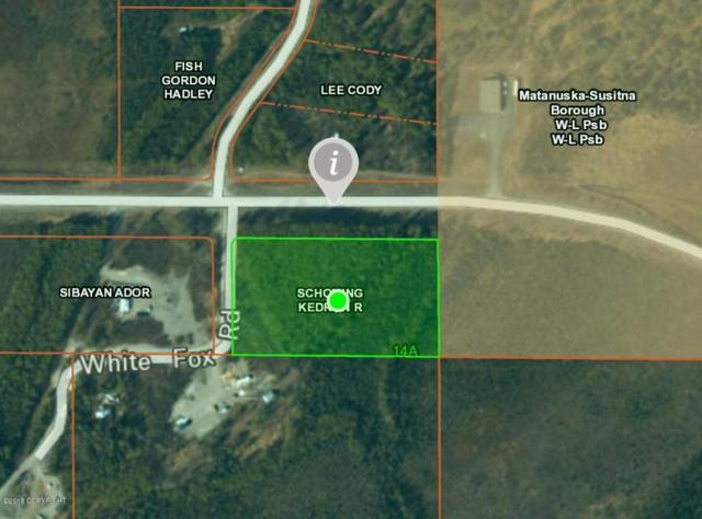 18422 Point Mackenzie Road, Wasilla, AK 99654 (MLS #18-14072) :: Channer Realty Group