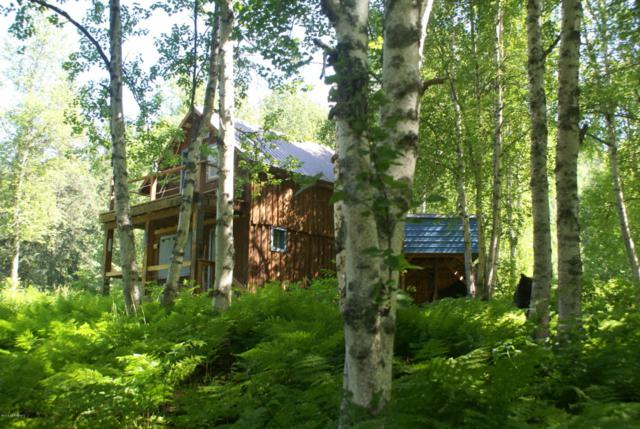 0000 No Road Mile 255 Train, Remote, AK 99000 (MLS #18-14199) :: Channer Realty Group