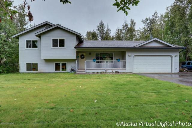 7240 S Turner Drive, Wasilla, AK 99623 (MLS #18-14265) :: Channer Realty Group