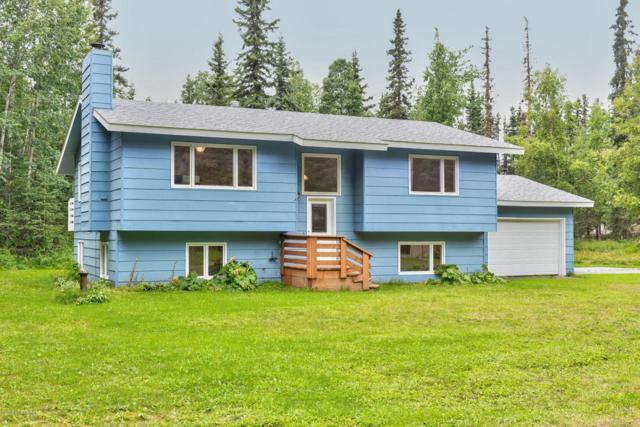 5209 King Salmon Drive, Kenai, AK 99611 (MLS #18-14277) :: Channer Realty Group