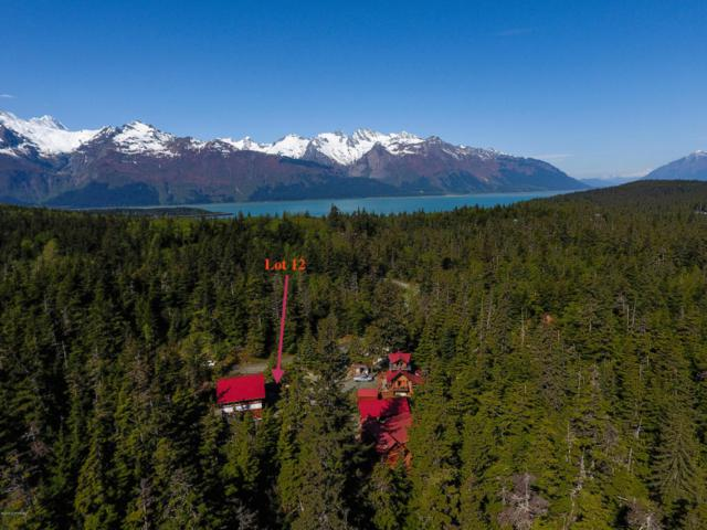 3648 Conifer Road, Haines, AK 99827 (MLS #18-14338) :: Synergy Home Team