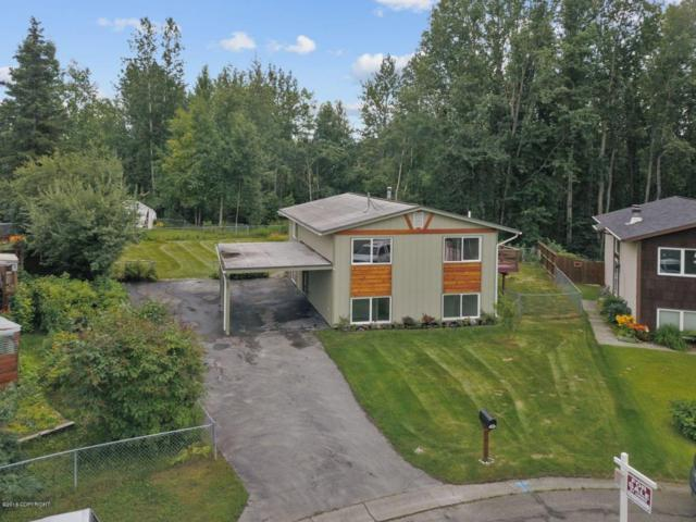 11460 Via Appia, Anchorage, AK 99515 (MLS #18-14358) :: Channer Realty Group