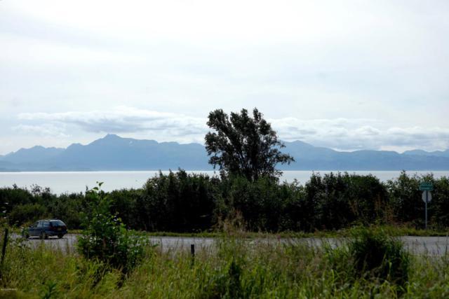 1546 Sterling Highway, Homer, AK 99603 (MLS #18-14457) :: Core Real Estate Group