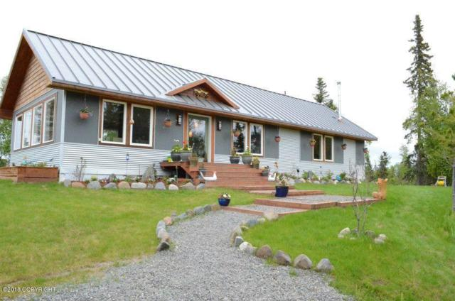 19173 Schaffer Street, Clam Gulch, AK 99568 (MLS #18-14619) :: Northern Edge Real Estate, LLC