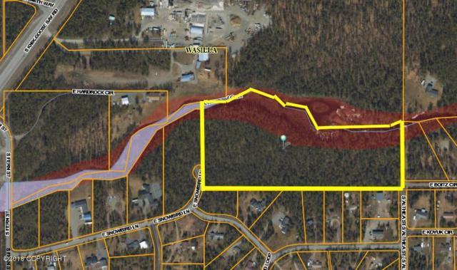 350 E Snowbird Lane, Wasilla, AK 99654 (MLS #18-14684) :: Channer Realty Group