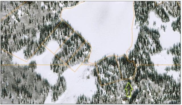 AS 90-079 Upper Heart Lake, Talkeetna, AK 99676 (MLS #18-14768) :: Team Dimmick