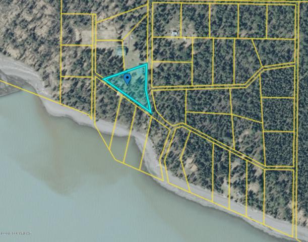 L1 B5 Tustumena Lake, Kasilof, AK 99610 (MLS #18-15105) :: Team Dimmick