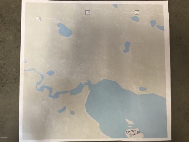 L11 B1 Caribou Island, Remote, AK 99000 (MLS #18-15279) :: Team Dimmick
