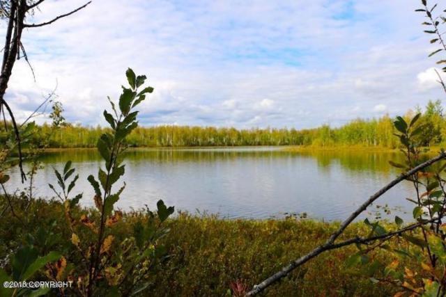 13923 W Big Lake Road, Big Lake, AK 99652 (MLS #18-15347) :: Team Dimmick