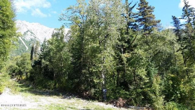 L3A Billy Goat Road, Haines, AK 99827 (MLS #18-15440) :: Northern Edge Real Estate, LLC