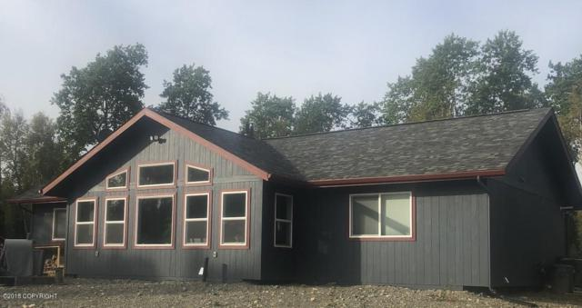 6196 S Purinton Parkway, Big Lake, AK 99652 (MLS #18-15486) :: Team Dimmick