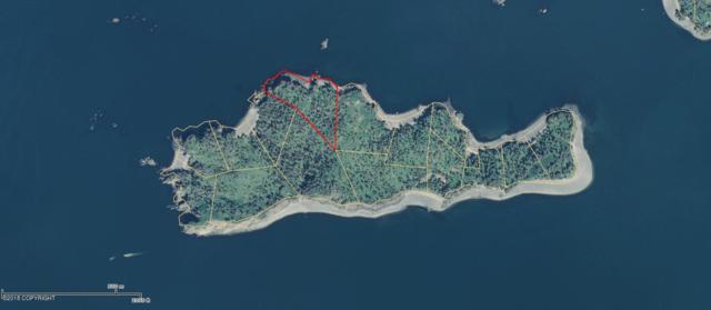 Tr 11 Hesketh Island, Homer, AK 99603 (MLS #18-15855) :: Northern Edge Real Estate, LLC