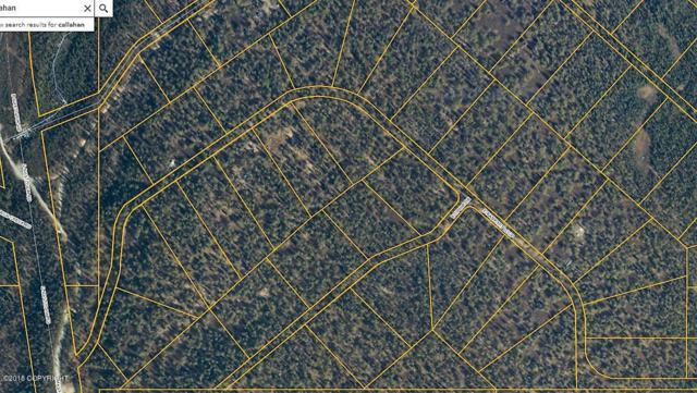20380 E Ophir Drive, Talkeetna, AK 99676 (MLS #18-15876) :: RMG Real Estate Network   Keller Williams Realty Alaska Group