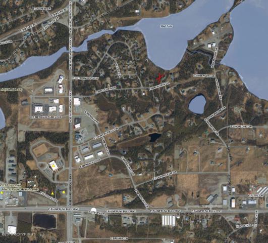 4101 E Birch View Drive, Wasilla, AK 99654 (MLS #18-16004) :: Northern Edge Real Estate, LLC
