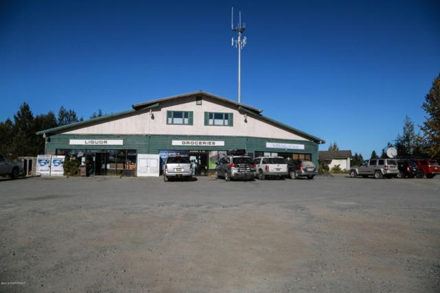 000 Packag Store Liquor License, Anchor Point, AK 99556 (MLS #18-16053) :: Northern Edge Real Estate, LLC