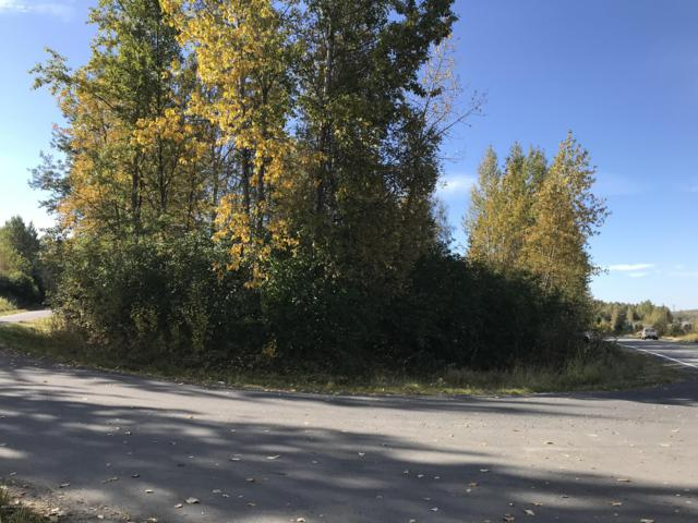 L27 B3 Eastside Drive, Chugiak, AK 99567 (MLS #18-16090) :: RMG Real Estate Network | Keller Williams Realty Alaska Group