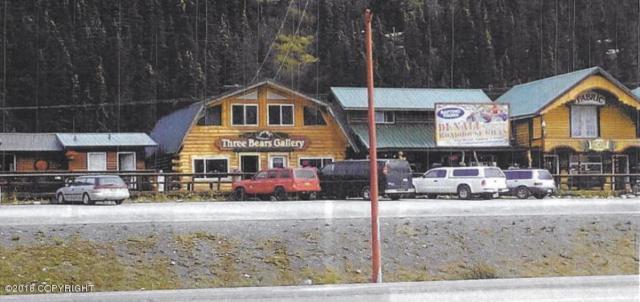 Mi 238 Parks Highway, Denali National Park, AK 99755 (MLS #18-16095) :: RMG Real Estate Network | Keller Williams Realty Alaska Group