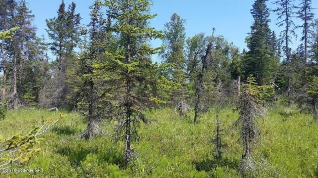 L201 Moose Point, Nikiski/North Kenai, AK 99635 (MLS #18-16105) :: Team Dimmick