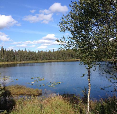 L3A3 Hopeful Circle, Soldotna, AK 99669 (MLS #18-16106) :: Alaska Realty Experts