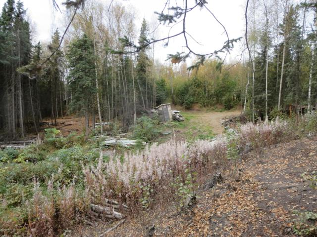 15580 W Alta Drive, Big Lake, AK 99652 (MLS #18-16112) :: Core Real Estate Group