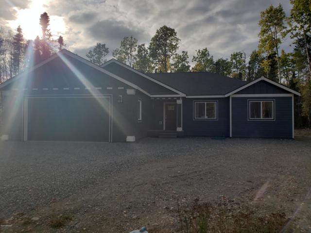 5106 N Gold Mint Drive, Wasilla, AK 99654 (MLS #18-16154) :: Northern Edge Real Estate, LLC