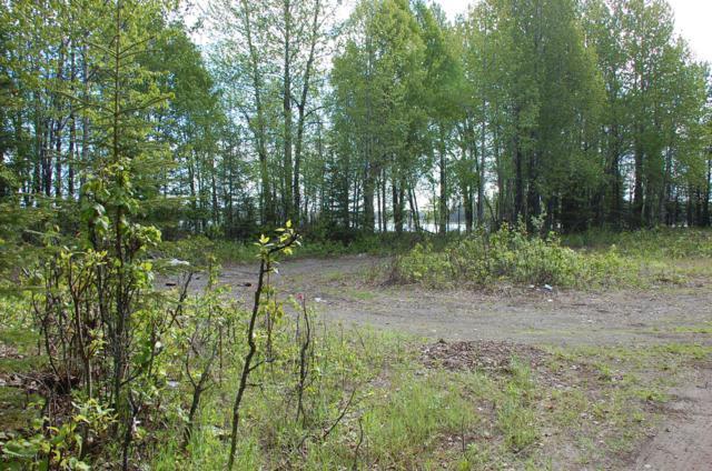 L1-6 Kenai Spur Highway, Nikiski/North Kenai, AK 99635 (MLS #18-16160) :: Team Dimmick