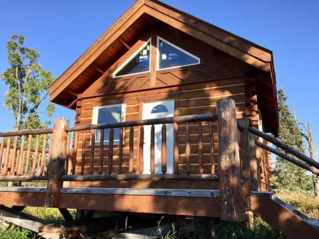 54626 Wilderness Lodge Trail, Ninilchik, AK 99639 (MLS #18-16174) :: Team Dimmick