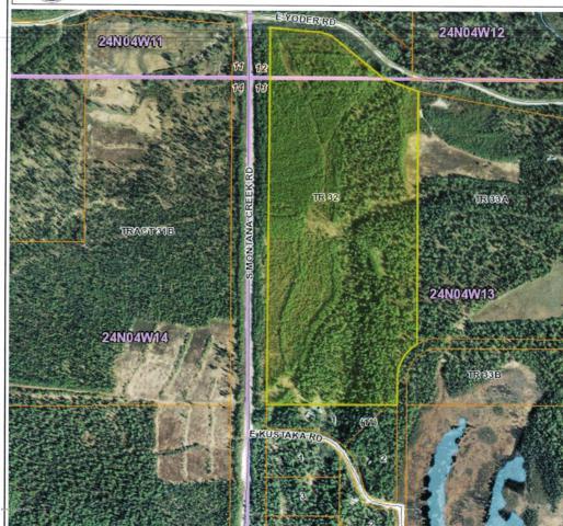 34651 S Montana Creek Road, Talkeetna, AK 99676 (MLS #18-16262) :: RMG Real Estate Network | Keller Williams Realty Alaska Group