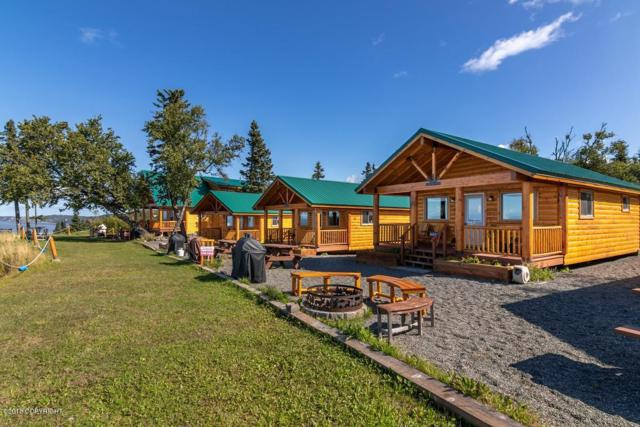 14823 Homestead Drive, Clam Gulch, AK 99568 (MLS #18-16273) :: Core Real Estate Group