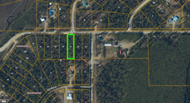 9074 W John Street, Wasilla, AK 99623 (MLS #18-16300) :: Team Dimmick