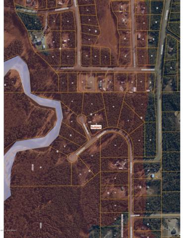 12674 W Pay Dirt Road, Houston, AK 99694 (MLS #18-16335) :: Team Dimmick