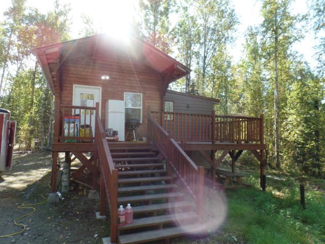 46690 S Fisherman Hop Road, Willow, AK 99688 (MLS #18-16404) :: Team Dimmick