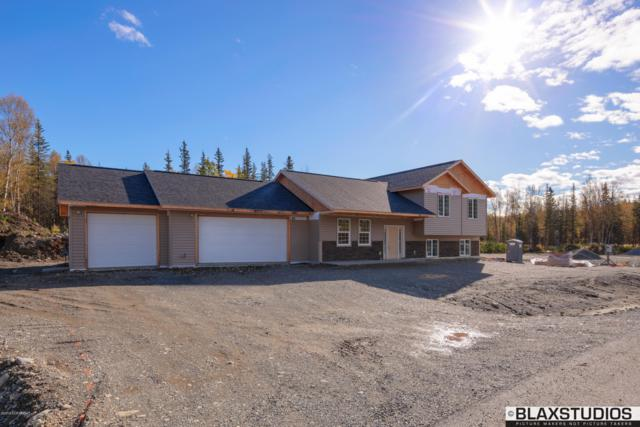 8375 E Ascension Circle, Palmer, AK 99645 (MLS #18-16574) :: Channer Realty Group