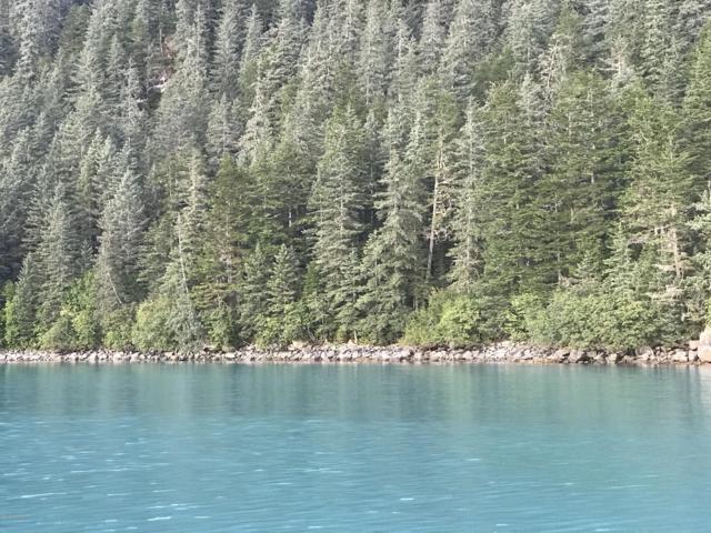 Tr E Day Harbor Remote, Remote, AK 99664 (MLS #18-16665) :: RMG Real Estate Network | Keller Williams Realty Alaska Group