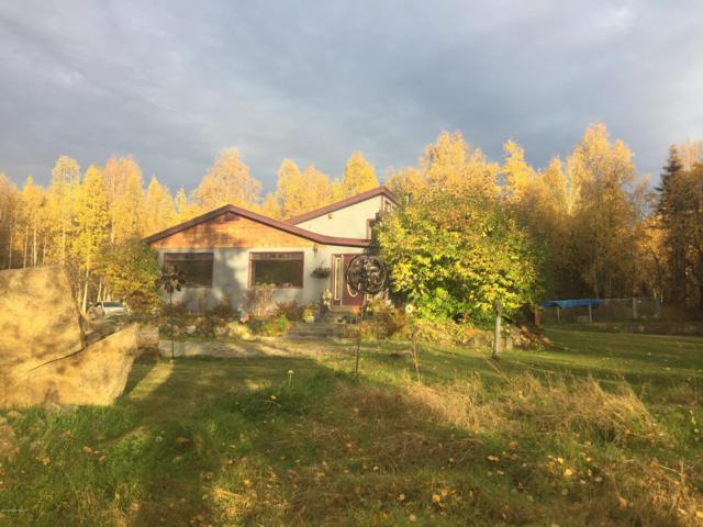 9444 N Blackie Loop, Willow, AK 99688 (MLS #18-16695) :: RMG Real Estate Network | Keller Williams Realty Alaska Group