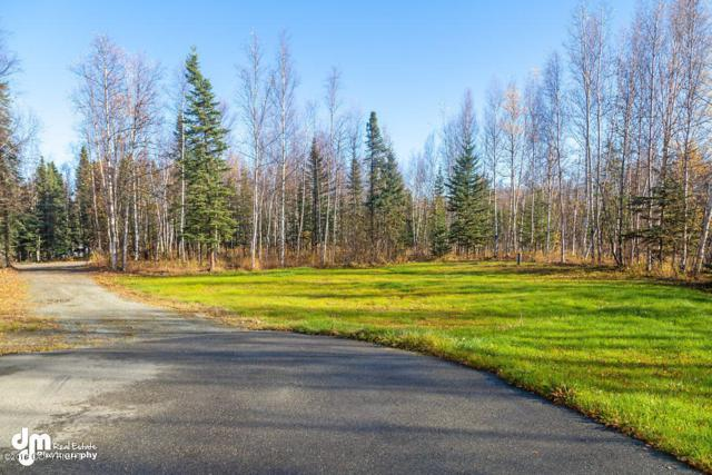 2580 N Trails End Circle, Wasilla, AK 99623 (MLS #18-16937) :: RMG Real Estate Network | Keller Williams Realty Alaska Group